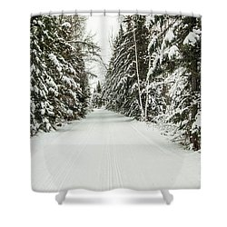 Winter Wonder Land Shower Curtain