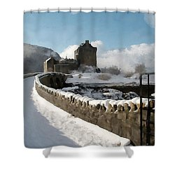 Winter Wonder Walkway Shower Curtain