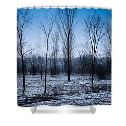 Shower Curtain featuring the photograph Winter Wonderland by Bianca Nadeau