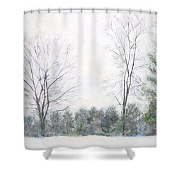 Winter Wonderland Usa Shower Curtain
