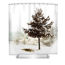 Winter Wonderland  Shower Curtain by Kerri Farley