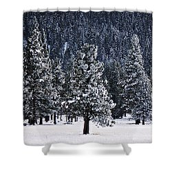 Winter Wonderland Shower Curtain by Melanie Lankford Photography