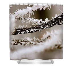Winter Wonders Shower Curtain by Tiffany Erdman