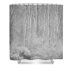 Winter Wood 2013 Shower Curtain