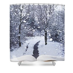 Winter Woodland Book Shower Curtain by Amanda Elwell