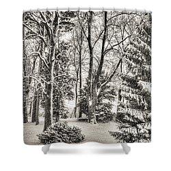 Winter Zauber 03 Shower Curtain
