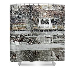 Wintering Geese On Silver Lake Shower Curtain