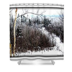 Winterlude Shower Curtain