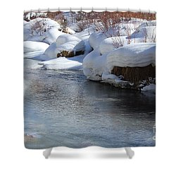 Winter's Blanket Shower Curtain by Fiona Kennard