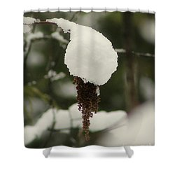 Winter's Cap Shower Curtain
