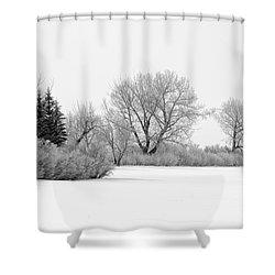 Winter's Cloak Shower Curtain