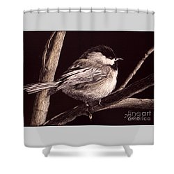 Winter's Day Shower Curtain