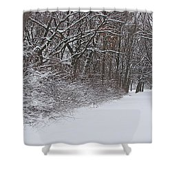Winters Delight 2 Shower Curtain by Cedric Hampton
