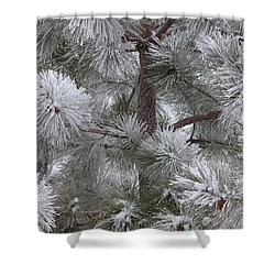 Winter's Gift Shower Curtain