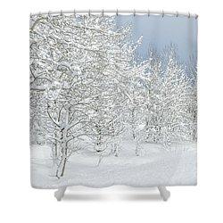 Winter's Glory - Grand Tetons Shower Curtain by Sandra Bronstein