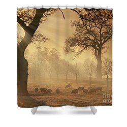 Winter's Gold Shower Curtain
