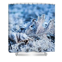 Winter's Icy Grip Shower Curtain