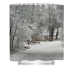 Shower Curtain featuring the photograph Winter's Kiss by Don Schwartz