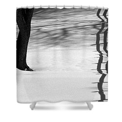 Winters Light Shower Curtain