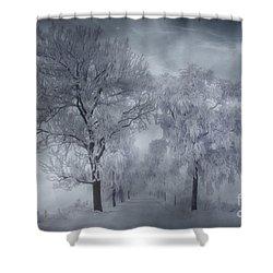Winter's Magic Shower Curtain by Veikko Suikkanen