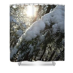 Winter's Paw Shower Curtain