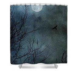 Winter's Silence Shower Curtain by Trish Mistric
