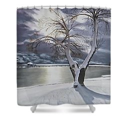Shower Curtain featuring the painting Winter's Whisper by Bonnie Heather