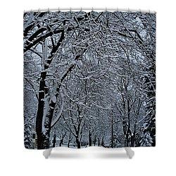 Winter's Work Shower Curtain by Joseph Yarbrough