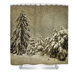 Winter's Wrath Shower Curtain by Lois Bryan