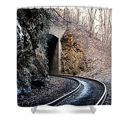 Wintery Tunnel Shower Curtain by Tammy Schneider