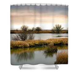 Shower Curtain featuring the photograph Wintery Wetlands by Jordan Blackstone