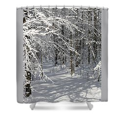 Wintery Woodland Shadows Shower Curtain