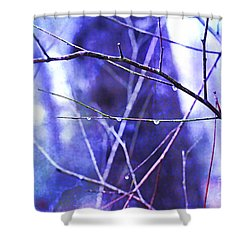 Wintry Shower Curtain by Judi Bagwell
