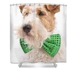 Wire Fox Terrier With Bowtie Shower Curtain by Verena Matthew