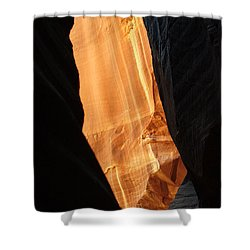 Wire Pass - Buckskin Wash 10 Shower Curtain