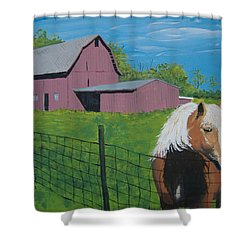 Wisconsin Barn Shower Curtain by Norm Starks