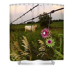 Shower Curtain featuring the photograph Wisconsin Evening by Viviana  Nadowski