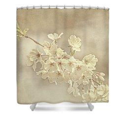 Wisdom Shower Curtain by Kim Hojnacki