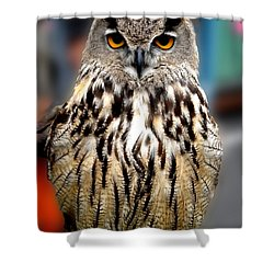 Wise Forest Mountain Owl Spain Shower Curtain by Colette V Hera  Guggenheim