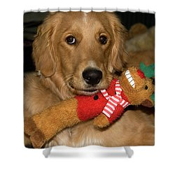 Wish For A Christmas Friend Shower Curtain
