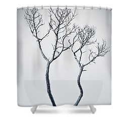 Wishbone Tree Shower Curtain