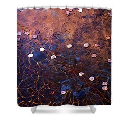Wishes Shower Curtain by Rona Black