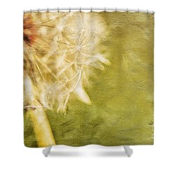 Wishful Thinking Shower Curtain by Lois Bryan