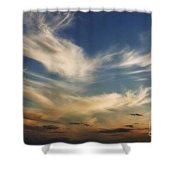 Wisp Shower Curtain by Andrew Paranavitana