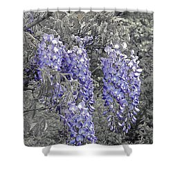 Wisteria Blossom Cluster Abstract -- Version 2 Shower Curtain by Byron Varvarigos
