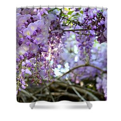 Shower Curtain featuring the photograph Wisteria Dream by Cathy Dee Janes