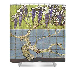 Wisteria Shower Curtain by Don Perino