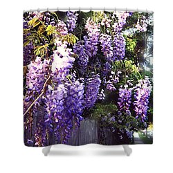 Wisteria Dreaming Shower Curtain