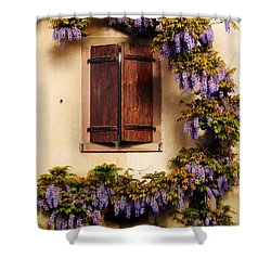 Wisteria Encircling Shutters In Riquewihr France Shower Curtain by Greg Matchick