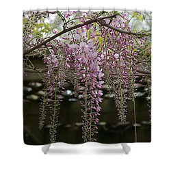 Wisteria Fall Shower Curtain